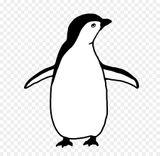 Imprimer le coloriage : Pinguoin, numéro 3e995f94
