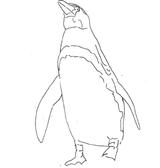 Imprimer le coloriage : Pinguoin, numéro 4c8fe0f9