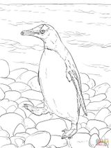 Imprimer le coloriage : Pinguoin, numéro 4d857a44