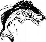 Imprimer le coloriage : Poisson, numéro 145875