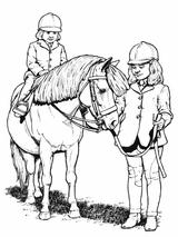 Imprimer le coloriage : Poney, numéro 141994