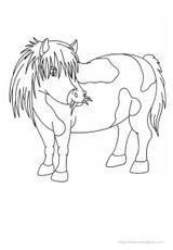 Imprimer le coloriage : Poney, numéro 146190