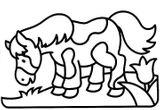 Imprimer le coloriage : Poney, numéro 146204