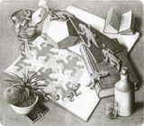 Imprimer le dessin en couleurs : Reptiles, numéro 119678