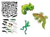 Imprimer le dessin en couleurs : Reptiles, numéro 223393