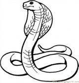 Imprimer le coloriage : Reptiles, numéro 27138