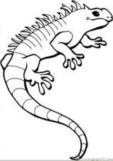 Imprimer le coloriage : Reptiles, numéro 28197
