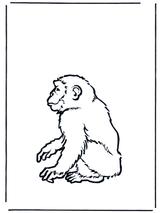 Imprimer le dessin en couleurs : Singe, numéro 108783