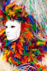 Imprimer le dessin en couleurs : Carnaval, numéro 117564