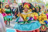 Imprimer le dessin en couleurs : Carnaval, numéro d70db648