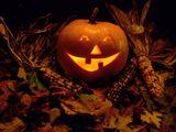 Imprimer le dessin en couleurs : Halloween, numéro 120603