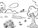 Imprimer le coloriage : Nature, numéro 113290