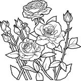 Imprimer le coloriage : Nature, numéro 114