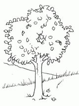 Imprimer le dessin en couleurs : Arbres, numéro 12886