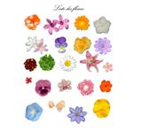 Imprimer le dessin en couleurs : Fleurs, numéro 11816