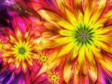 Imprimer le dessin en couleurs : Fleurs, numéro 397857