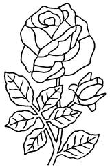 Imprimer le coloriage : Fleurs, numéro 5217