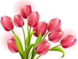 Imprimer le dessin en couleurs : Fleurs, numéro 550819