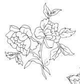 Imprimer le coloriage : Fleurs, numéro 678169