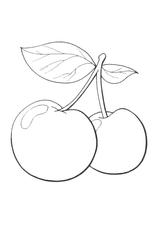 Imprimer le dessin en couleurs : Fruits, numéro 523173