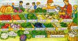 Imprimer le dessin en couleurs : Légumes, numéro 119304