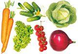 Imprimer le dessin en couleurs : Légumes, numéro 11933