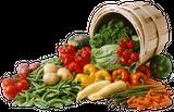 Imprimer le dessin en couleurs : Légumes, numéro 13530