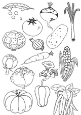 Imprimer le coloriage : Légumes, numéro 8180