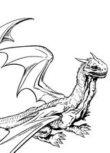Imprimer le coloriage : Harry Potter, numéro 113440