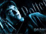 Imprimer le dessin en couleurs : Harry Potter, numéro 117207