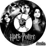 Imprimer le coloriage : Harry Potter, numéro 128270