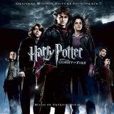 Imprimer le dessin en couleurs : Harry Potter, numéro 156584