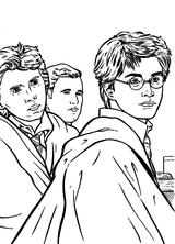 Imprimer le coloriage : Harry Potter, numéro 1663