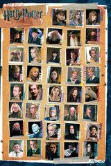 Imprimer le dessin en couleurs : Harry Potter, numéro 19010