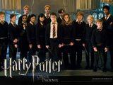 Imprimer le dessin en couleurs : Harry Potter, numéro 502384