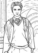 Imprimer le coloriage : Harry Potter, numéro 5524