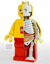 Imprimer le dessin en couleurs : Lego, numéro 208589