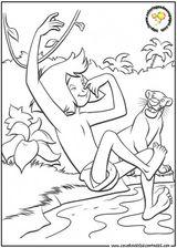 Coloriages A Imprimer Le Livre De La Jungle Page 1