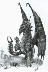 Imprimer le dessin en couleurs : Dragon, numéro 116771