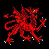 Imprimer le dessin en couleurs : Dragon, numéro 116774