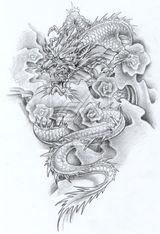 Imprimer le dessin en couleurs : Dragon, numéro 116780