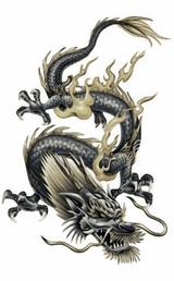 Imprimer le dessin en couleurs : Dragon, numéro 116784