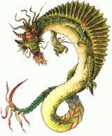 Imprimer le dessin en couleurs : Dragon, numéro 20344