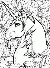 Imprimer le dessin en couleurs : Licorne, numéro 136772