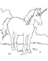 Imprimer le coloriage : Licorne, numéro 141846