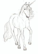 Imprimer le dessin en couleurs : Licorne, numéro 20769